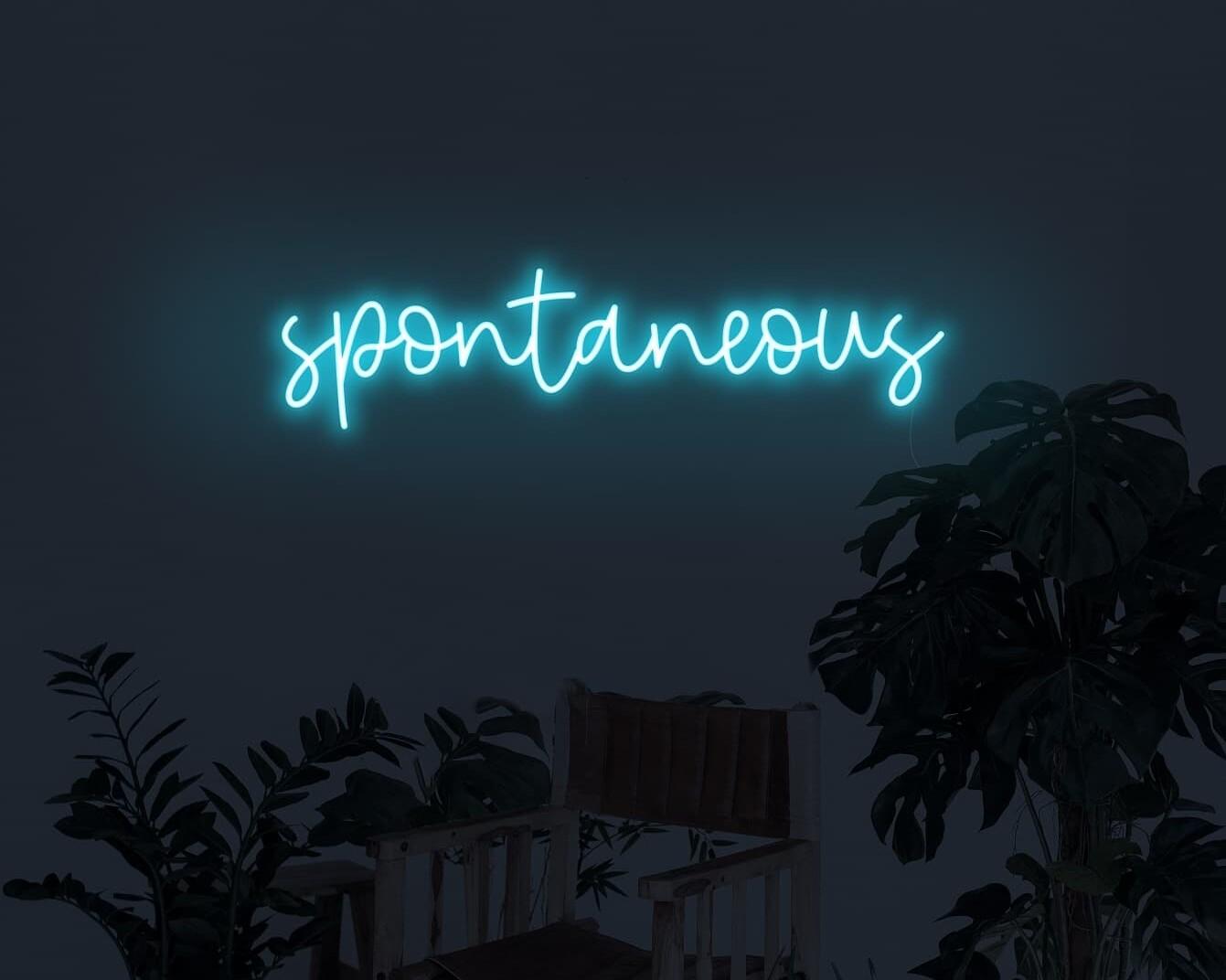 Spontaneous Neon Sign